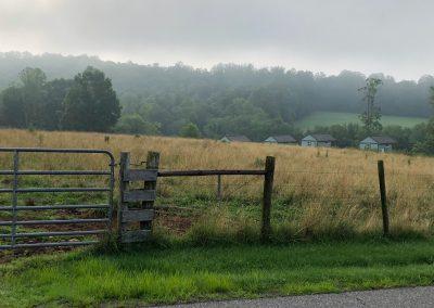 Foggy-Fence-Ridge-Rider